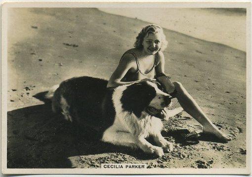 Cecilia Parker 1936 BAT Modern Beauties Tobacco Card