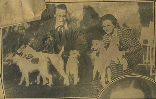Mr & Mrs Warren William and Wirehair Terriers