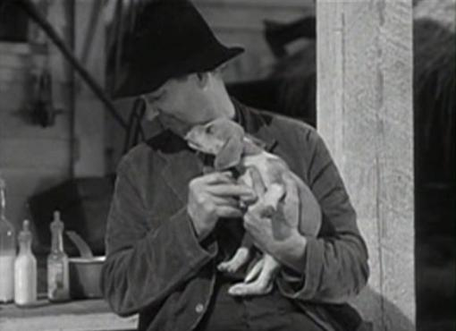 Lionel Barrymore in The Voice of Bugle Ann
