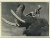 200-sabu-in-elephant-boy