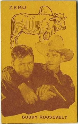 Buddy Roosevelt Film Stars and Animals Strip Card